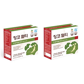 Hai hộp thực phẩm chức năng GINKGO MULTI