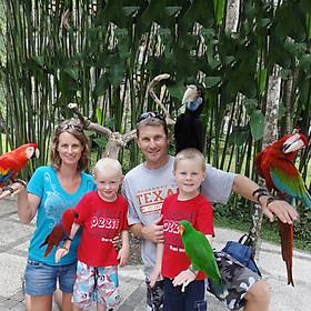 Vé Tham Quan Bali Bird Park, Indonesia