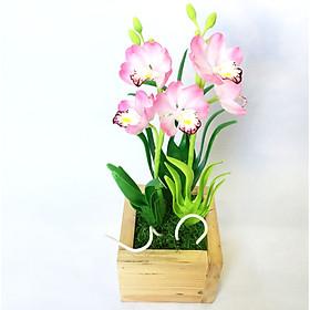 Hình ảnh Chậu hoa đất sét mini- Địa lan hồng - Quà tặng trang trí handmade (34x11x11cm)