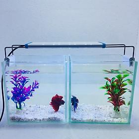 Combo 2 bể cá mini để bàn 15cm có đèn led