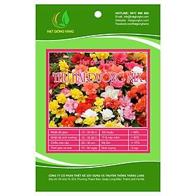 Hạt giống hoa Thu hải đường Mix F1 10 Hạt