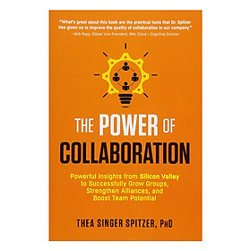 The Power of Collaboration : Powerful Insights from Silicon Valley to Successfully Grow Groups, Strengthen Alliances, and Boost Team Potential