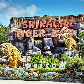 Vé Tham Quan Trại Hổ Sriracha Ở Pattaya, Thái Lan
