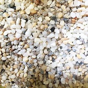 Sỏi biển trang trí chậu cây ( cỡ hạt bắp )