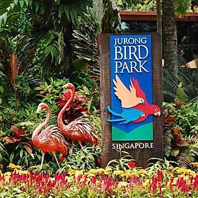 Vé Vườn Chim Jurong (Jurong Bird Park), Singapore