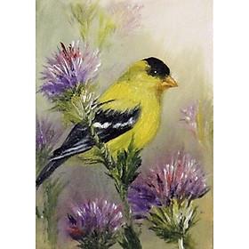 Tranh sơn dầu họa sỹ sáng tác vẽ tay: CHÚ CHIM VÀNG (2)