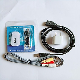 Bộ USB thu Bluetooth 5 in 1 cho dàn amply và loa