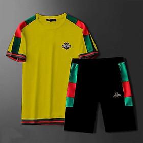 Bộ quần áo thể thao ngắn tay may bo cho bé trai, bé gái, bố mẹ, thun cotton (200553)