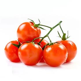 [Chỉ giao HN] Cà chua  - 1kg