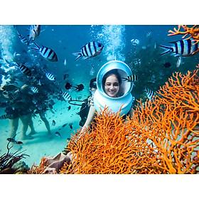 PHÚ QUỐC Tour dịch vụ đi bộ dưới đáy biển