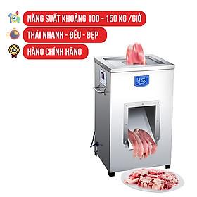Máy Cắt, Thái Thịt Tươi Sống NEWSUN DQ - 1 - Thái Đa Dạng Kích Thước, Năng Suất Vượt Trội - Hàng Chính Hãng