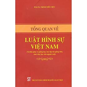 Tổng Quan Về Luật Hình Sự Việt Nam
