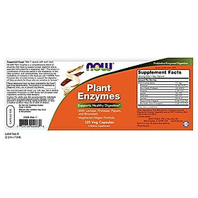 Viên Uống Now Plant Enzymes Với Lactase, Protease, Papain & Bromelain (120 Viên Nang Thực Vật)
