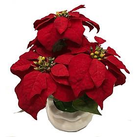 Hoa Trạng Nguyên Vải Nhung Đỏ PT0215