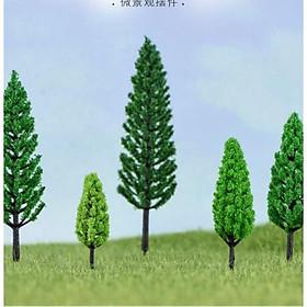 Cây rừng trang trí sân cườn chậu cây ngoài trời