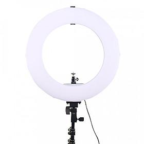 Đèn Led Ring MD250B 3200-7500k 14 inch có đế gắn pin