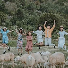 Tour Bình Hưng - Hang Rái - Đồng Cừu - Vườn Nho 01 Ngày, Đón Tiễn Tận Nơi Trung Tâm Thành Phố Nha Trang