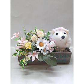Hộp nhím đáng yêu bên vườn hoa