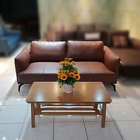 Bộ Sofa Mini Nhỏ Gọn _ Màu Nâu Mạnh Mẽ _ Hiện Đại và Sang Trọng _ Size 1800