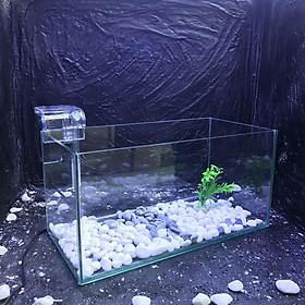 Bể cá mini D40R20C20cm COMBO ĐẦY ĐỦ tặng phụ kiện trang trí