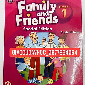 FLASHCARD FAMILY AND FRIENDS 1(special)- cán c300