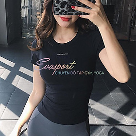 Áo tập gym Ami cộc tay tập gym, yoga, thể thao, zumba nữ Eva Sport cao cấp vải dệt kim, co giãn tốt, ôm dáng, fit người