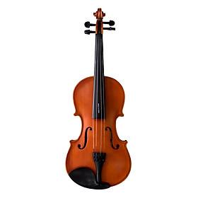 Đàn Violin Vines V35