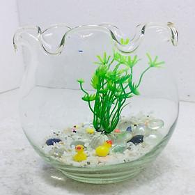 Bể cá mini để bàn tai bèo có phụ kiện