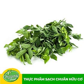 Rau ngót Nhật hữu cơ Organicfood - 250g
