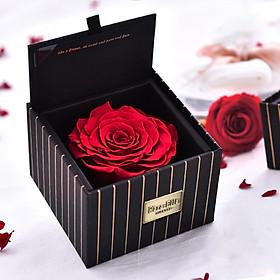 Para Ella Red Everlasting Flower Rose Flower Gift Box Christmas Gift City Flower Delivery Valentine's Day Gift Birthday Anniversary Gift Girl Girlfriend