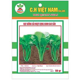 3 Gói Hạt Giống Rau Cải Ngọt Cọng Xanh  Cao Sản (50gr/ gói)