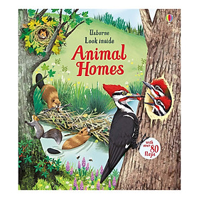 Usborne Look Inside: Animal Homes