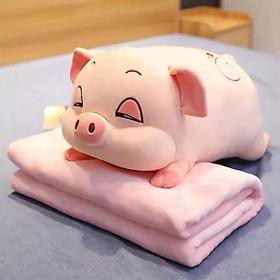 Gấu Bông Heo Phê Cần - lợn ngủ mềm ngộ nghĩnh màu xám, hồng kích thước 50cm - có kèm chăn