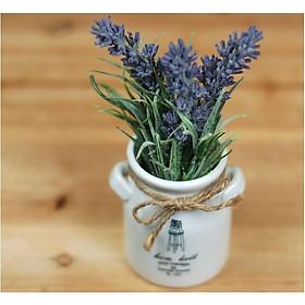 Chậu sứ hoa Oải hương giả hình tai thỏ màu Tím ms 1045