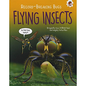 Record Breaking Bugs : Flying Insects