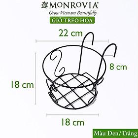 Combo 3 Giỏ treo chậu hoa ban công MONROVIA, giỏ sắt treo chậu hoa ban công, chậu treo ban công, kệ treo ban công, móc treo, khung thép, sơn tĩnh điện chính hãng thương hiệu MONROVIA  - Màu Đen