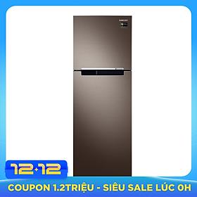 Tủ Lạnh Inverter Samsung RT25M4032DX/SV (256L) - Hàng chính hãng