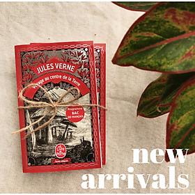 Sách đọc tiếng Pháp - Voyage au centre de la Terre