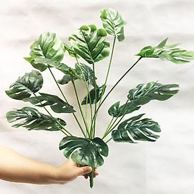 Cây giả - Cây lá rùa trang trí cao 50cm