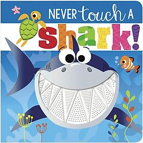 Never Touch a Shark - Đừng Chạm Vào Cá Mập
