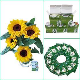 Thuốc cắm hoa Hướng Dương lâu tàn nhập khẩu Israel (Set 50 gói) giúp hoa tươi gấp 2 lần và 14 ngày không thay nước mới