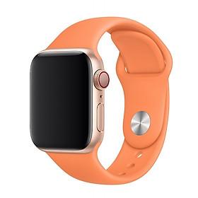 Dây đeo silicon màu dành cho Apple Watch 38mm / 40mm / 42mm / 44mm