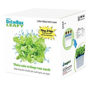 Hình đại diện sản phẩm Bộ 10 thùng (60 rọ) trồng thủy canh rau ăn lá - Hợp Trí Growbox Leafy Kit 10