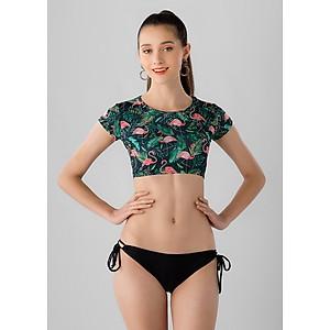 Hình đại diện sản phẩm Bikini Hồng Hạc P2P Bikini B70_L7 - Xanh Lá (Size M)