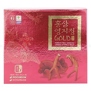 Hình đại diện sản phẩm Cao Hồng Sâm Linh Chi Pocheon Hàn Quốc (480g)