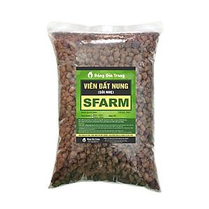 Hình đại diện sản phẩm Viên đất nung (sỏi nhẹ) 5 - 10mm trồng lan, sứ, sen đá, thủy canh Sfarm (5dm3) - Bonsai soil