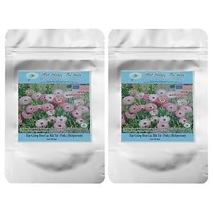 Bộ 2 Túi Hạt Giống Hoa Cúc Bất Tử Pinky (Helipterum) - 30 Hạt