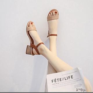 Sandal nữ quai ngang đế 3p phối màu thời trang S31