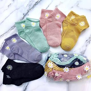 Set 10 đôi tất, vớ cổ ngắn nữ họa tiết hoa cúc, vải cotton thông thoáng, chống mùi