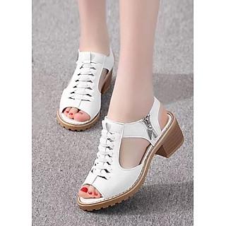 Giày  Sandal DN.10